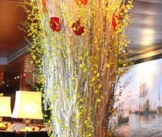 Dianthus-Flowers-Gallery-CruiseShips-10