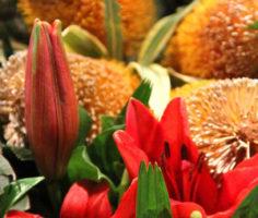 Luxury Flower Arrangements in Palm Beach FL