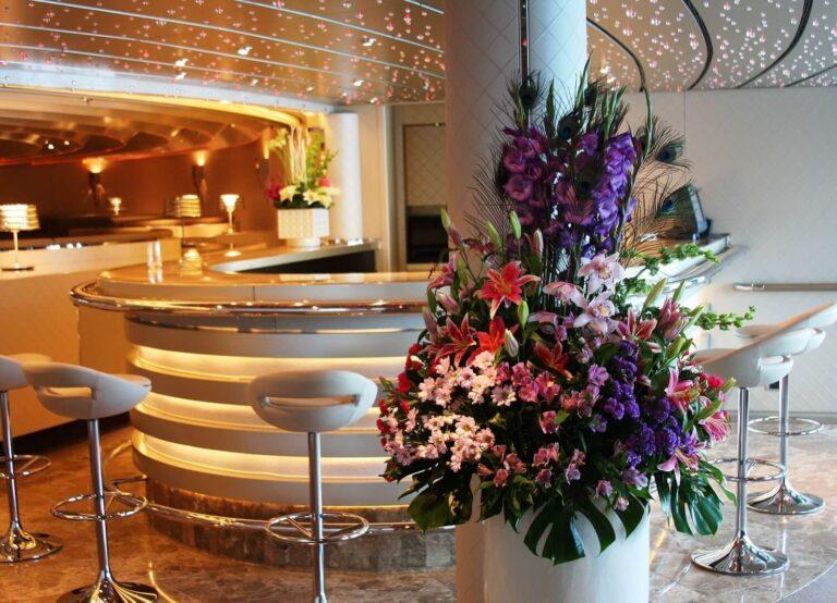 Dianthus Miami - Homepage (6)